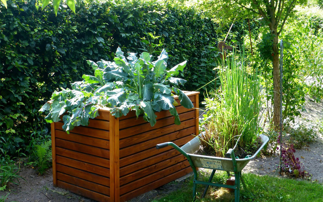 Benefits to Raised Garden Beds