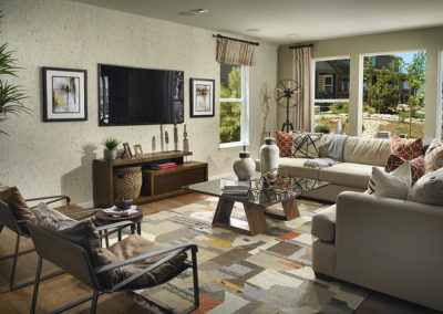 Sterling-Ranch_Canyon_Family-Room-1