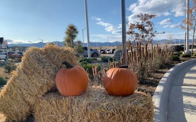 "Fall Festival at Sterling Ranch — ""A Perfect Day"""