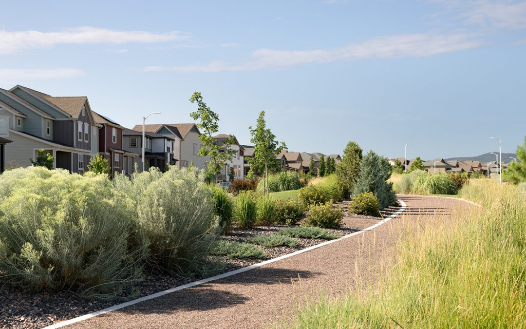 Sterling Ranch Residents Love Landscaping Here